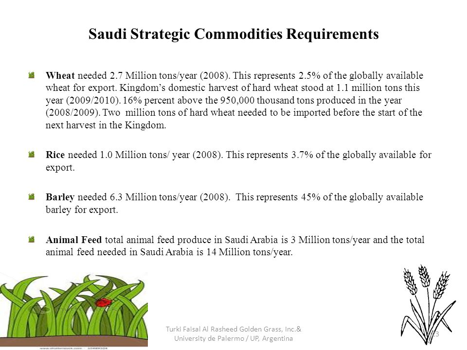 Saudi Strategic Commodities Requirements Wheat needed 2.7 Million tons/year (2008). This represents 2.5% of the globally available wheat for export. K