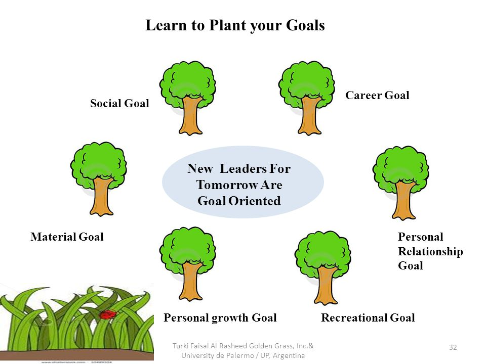 Turki Faisal Al Rasheed Golden Grass, Inc.& University de Palermo / UP, Argentina 32 Career Goal Personal Relationship Goal New Leaders For Tomorrow Are Goal Oriented Recreational GoalPersonal growth Goal Material Goal Social Goal Learn to Plant your Goals