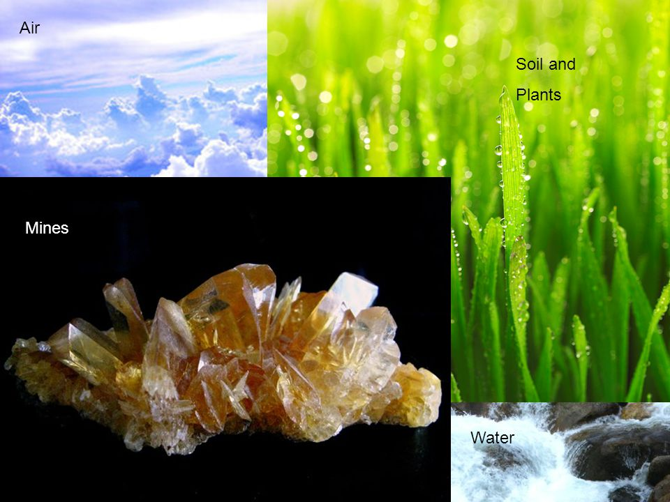 Air Soil and Plants Mines Water