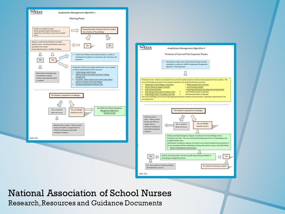 National Association of School Nurses Research, Resources and Guidance Documents