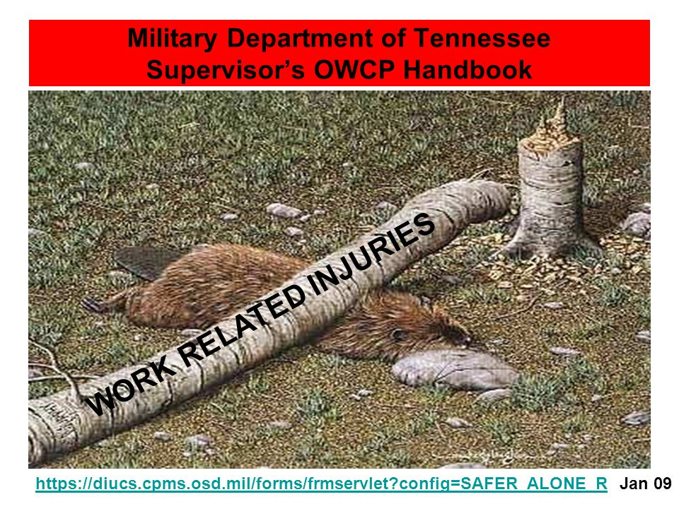 Military Department of Tennessee Supervisor's OWCP Handbook PURPOSE OF THIS GUIDEPURPOSE OF THIS GUIDE1 PROGRAM COST1PROGRAM COST ABOUT WORKER'S COMPENSATIONABOUT WORKER'S COMPENSATION2 SOL REMEDYSOL REMEDY3 PENALITIES FOR MISUSEPENALITIES FOR MISUSE3 WHEN TO ISSUE OWCP FORMSWHEN TO ISSUE OWCP FORMS3 – 3a BURDEN OF PROOFBURDEN OF PROOF4 TIMETIME4 CIVIL EMPLOYEECIVIL EMPLOYEE4 FACT OF INJURYFACT OF INJURY4 PERFORMANCE OF DUTYPERFORMANCE OF DUTY4 CAUSAL RELATIONSHIPCAUSAL RELATIONSHIP4 BENEFITSBENEFITS5 MEDICAL BENEFITSMEDICAL BENEFITS5 CONTINUATION OF PAYCONTINUATION OF PAY6 DISABILITY COMPENSATIONDISABILITY COMPENSATION6 COMPENSATION RATESCOMPENSATION RATES6 DURATION OF COMPENSATIONDURATION OF COMPENSATION7 LOSS OF WAGE-EARNING CAPABILITYLOSS OF WAGE-EARNING CAPABILITY7 SCHEDULED AWARDSCHEDULED AWARD7 VOCATIONAL REHABILITATIONVOCATIONAL REHABILITATION7 DEATH BENEFITSDEATH BENEFITS8 ELECTRONIC DATA INTERCHANGE (EDI)ELECTRONIC DATA INTERCHANGE (EDI)9 https://diucs.cpms.osd.mil/forms/frmservlet?config=SAFER_ALONE_R INTERNET EXPLORER & JAVAINTERNET EXPLORER & JAVA9 a