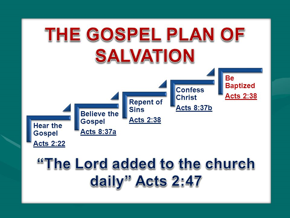 Hear the Gospel Acts 2:22 Believe the Gospel Acts 8:37a Repent of Sins Acts 2:38 Confess Christ Acts 8:37b Be Baptized Acts 2:38