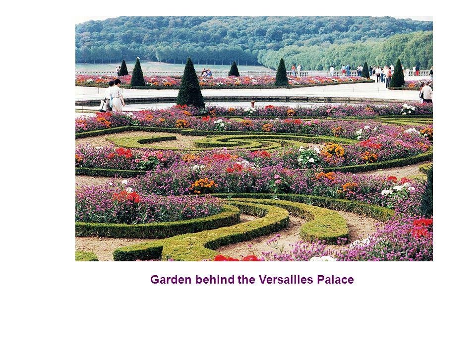 Garden behind the Versailles Palace