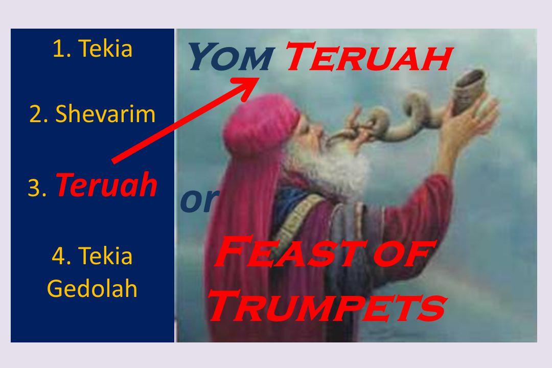 Yom Teruah 1. Tekia 2. Shevarim 3. Teruah 4. Tekia Gedolah or Feast of Trumpets