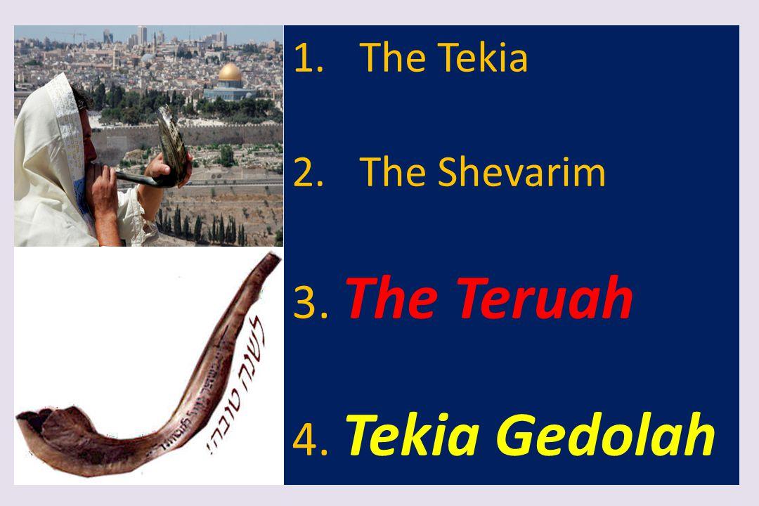 1.The Tekia 2.The Shevarim 3. The Teruah 4. Tekia Gedolah