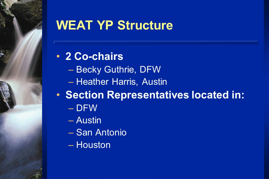 WEAT YP Structure 2 Co-chairs –Becky Guthrie, DFW –Heather Harris, Austin Section Representatives located in: –DFW –Austin –San Antonio –Houston