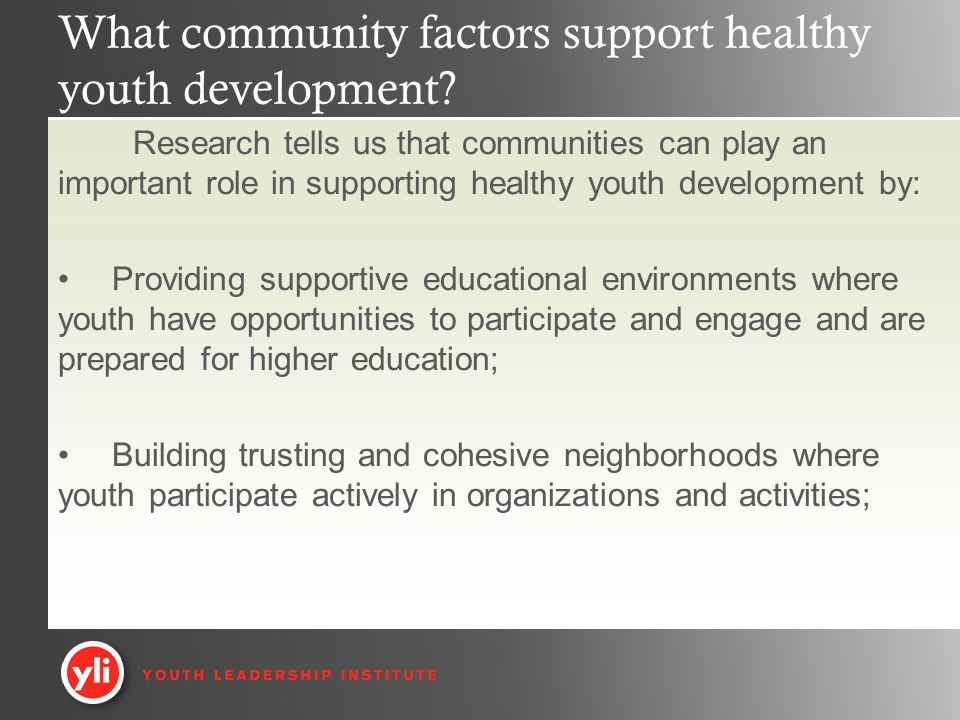 What community factors support healthy youth development.