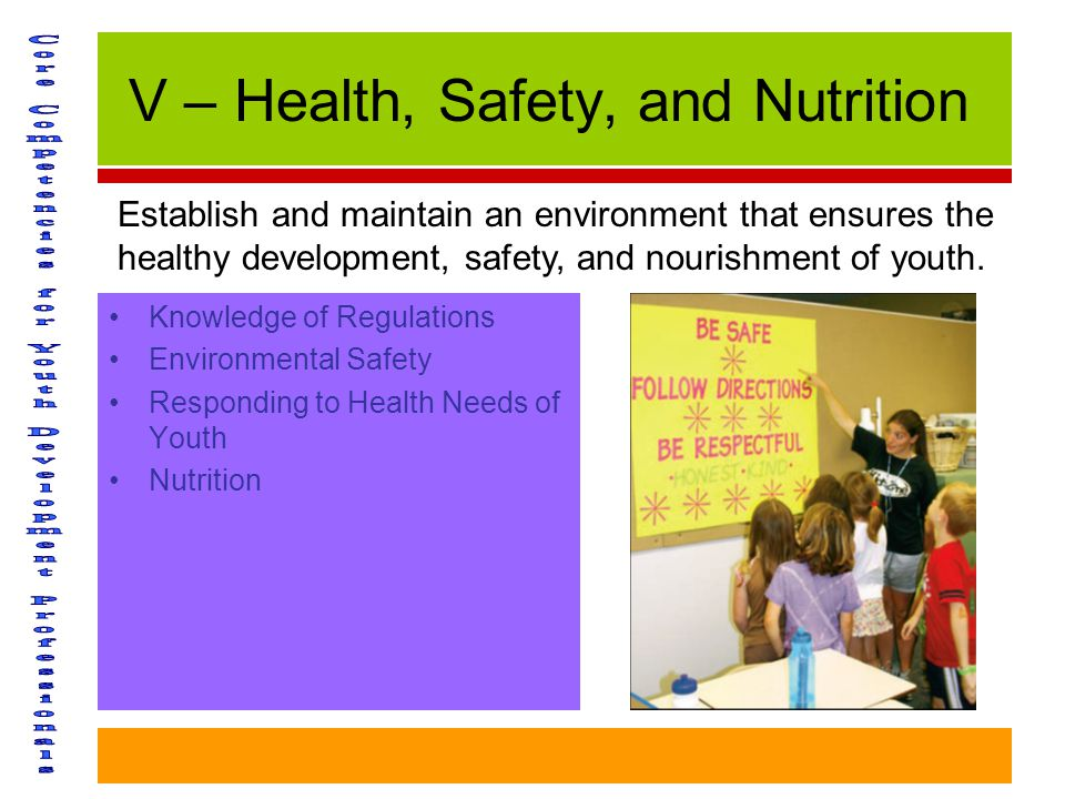 V – Health, Safety, and Nutrition Knowledge of Regulations Environmental Safety Responding to Health Needs of Youth Nutrition Establish and maintain an environment that ensures the healthy development, safety, and nourishment of youth.