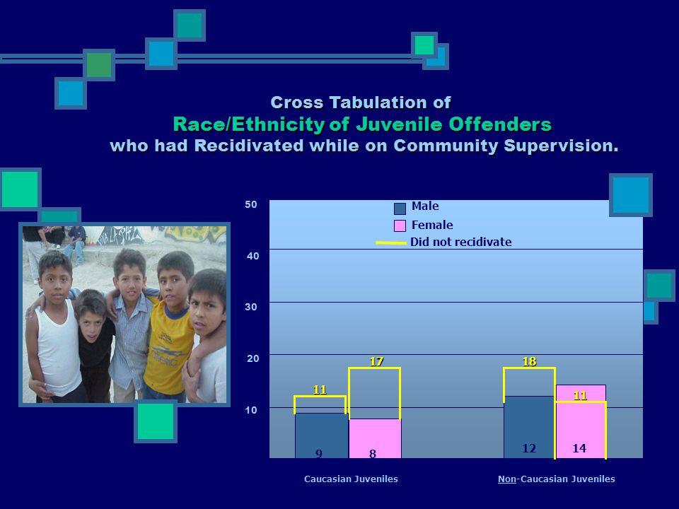 10 40 30 20 50 8 Male Female 1214 11 1817 Did not recidivate Caucasian Juveniles 9 11 Non-Caucasian Juveniles Cross Tabulation of Race/Ethnicity of Ju