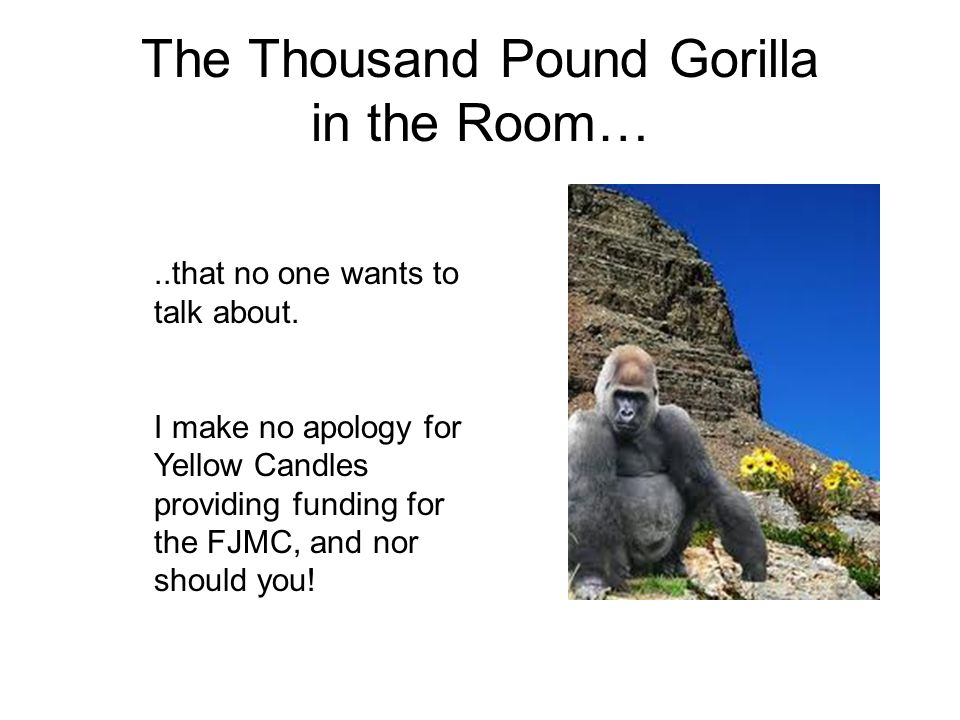 The Thousand Pound Gorilla in the Room…..that no one wants to talk about.