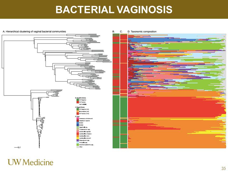 BACTERIAL VAGINOSIS 35