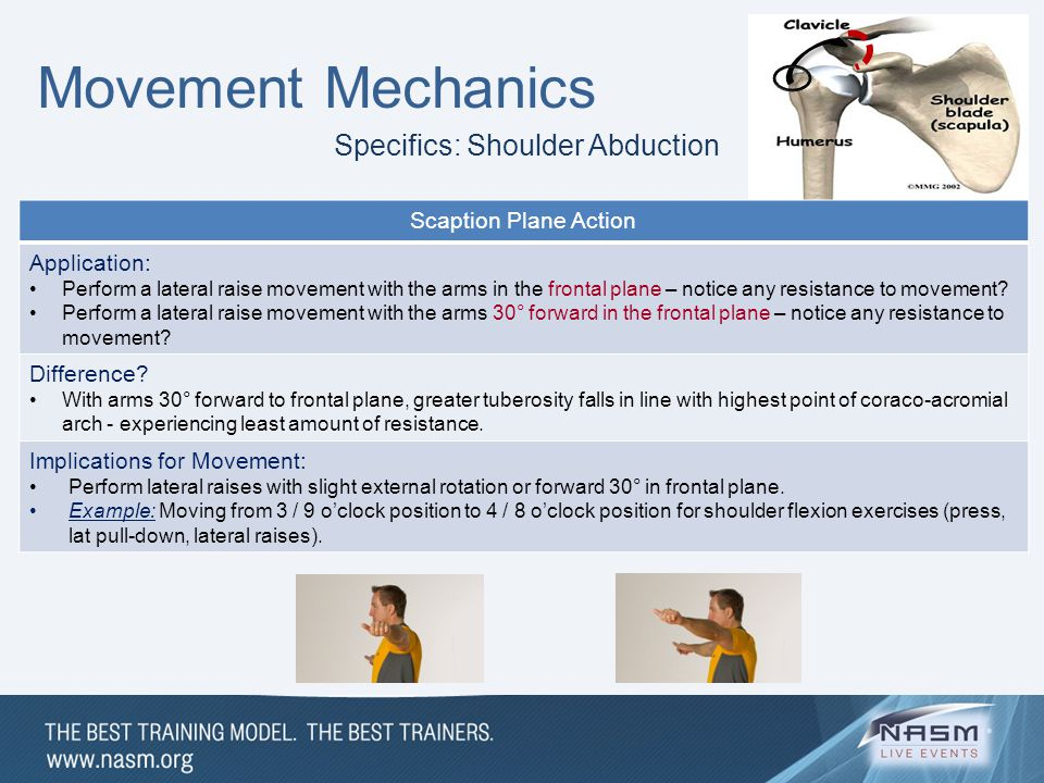 Movement Mechanics Specifics: Shoulder Abduction Scaption Plane Action Application: Perform a lateral raise movement with the arms in the frontal plan