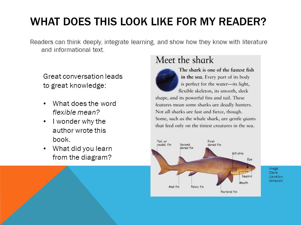 WHAT DOES THIS LOOK LIKE FOR MY READER? Readers can think deeply, integrate learning, and show how they know with literature and informational text. I