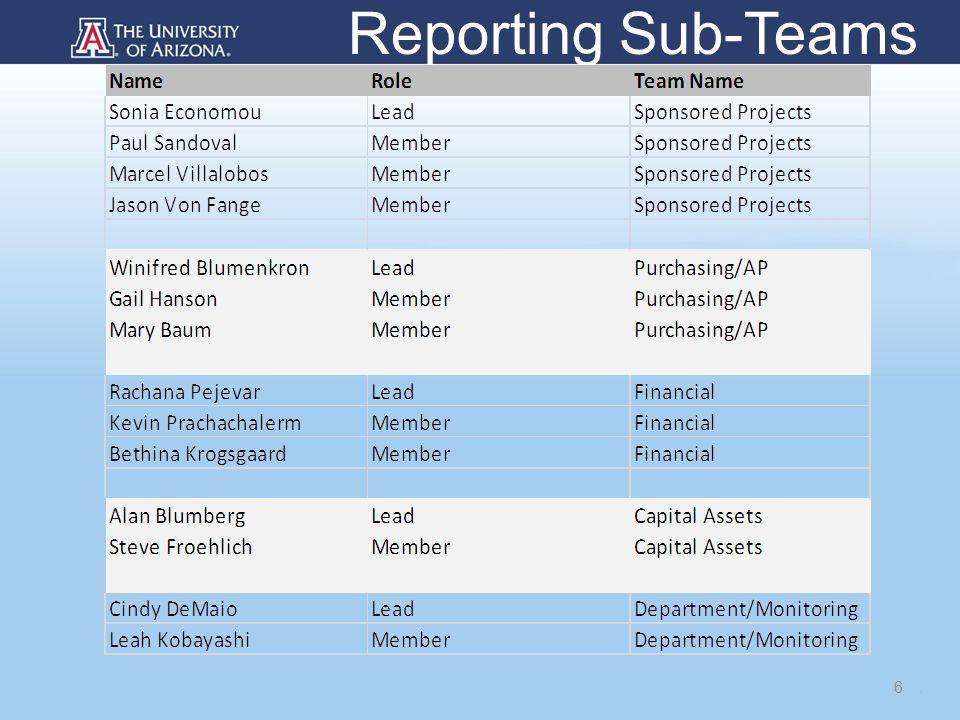 Reporting Sub-Teams 6