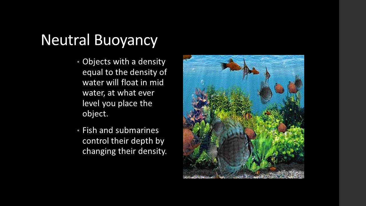 Neutral Buoyancy Objects with a density equal to the density of water will float in mid water, at what ever level you place the object. Fish and subma