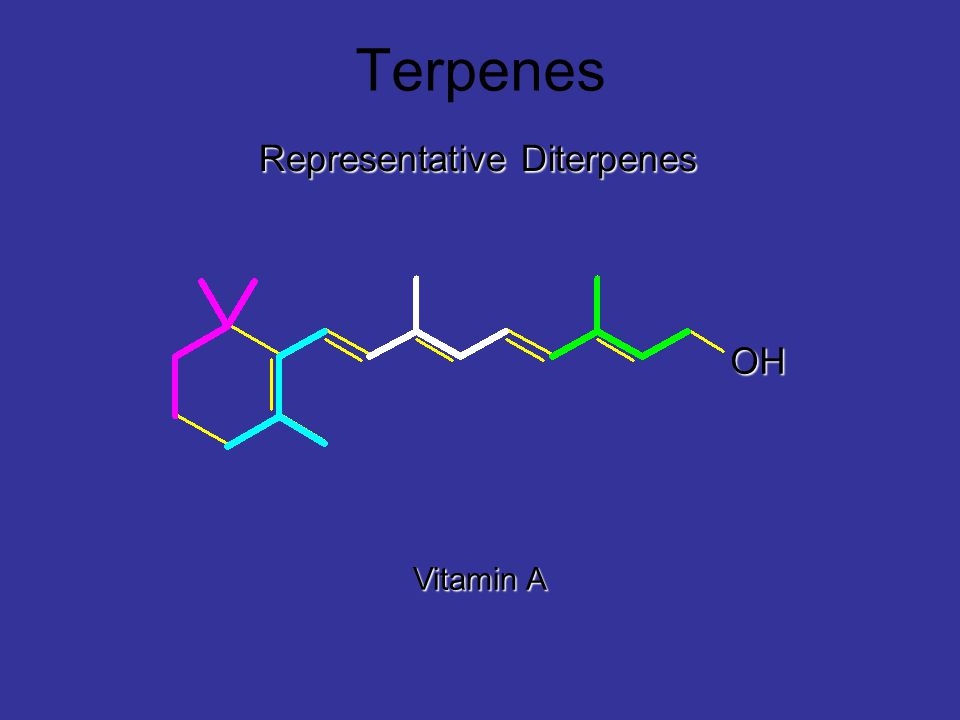 Terpenes Representative Diterpenes Vitamin A OH