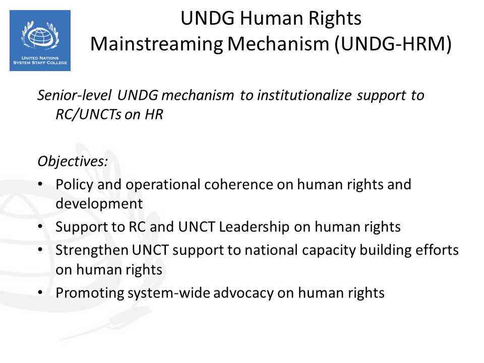 UNDG Human Rights Mainstreaming Mechanism (UNDG-HRM) Senior-level UNDG mechanism to institutionalize support to RC/UNCTs on HR Objectives: Policy and operational coherence on human rights and development Support to RC and UNCT Leadership on human rights Strengthen UNCT support to national capacity building efforts on human rights Promoting system-wide advocacy on human rights