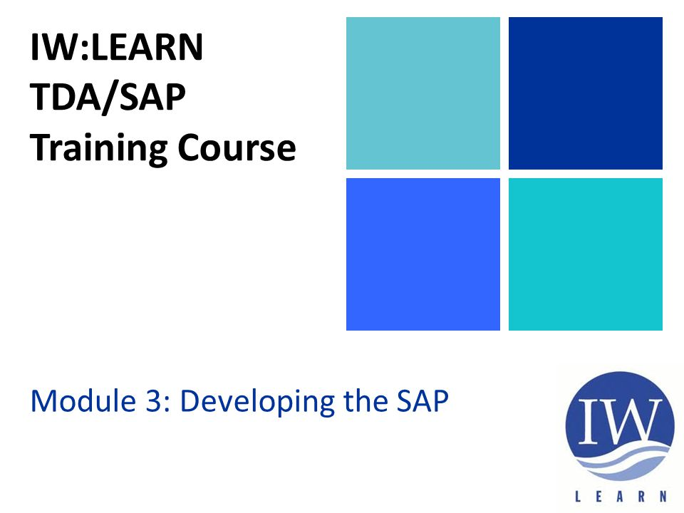 IW:LEARN TDA/SAP Training Course Module 3: Developing the SAP