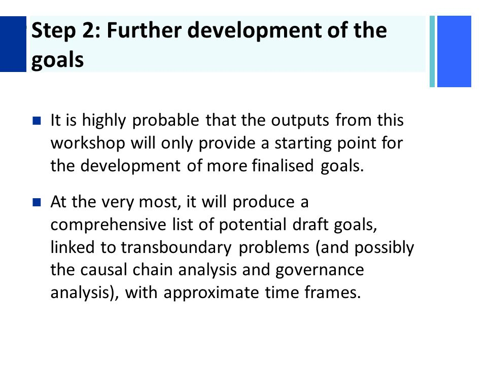 + Step 2: Further development of the goals It is highly probable that the outputs from this workshop will only provide a starting point for the development of more finalised goals.