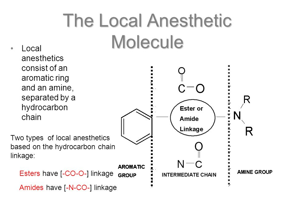 The Local Anesthetic Molecule Local anesthetics consist of an aromatic ring and an amine, separated by a hydrocarbon chain Two types of local anesthetics based on the hydrocarbon chain linkage: Esters have [-CO-O-] linkage Amides have [-N-CO-] linkage