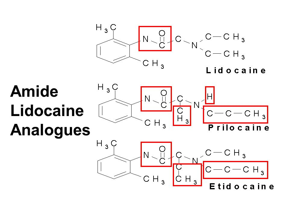 Amide Lidocaine Analogues