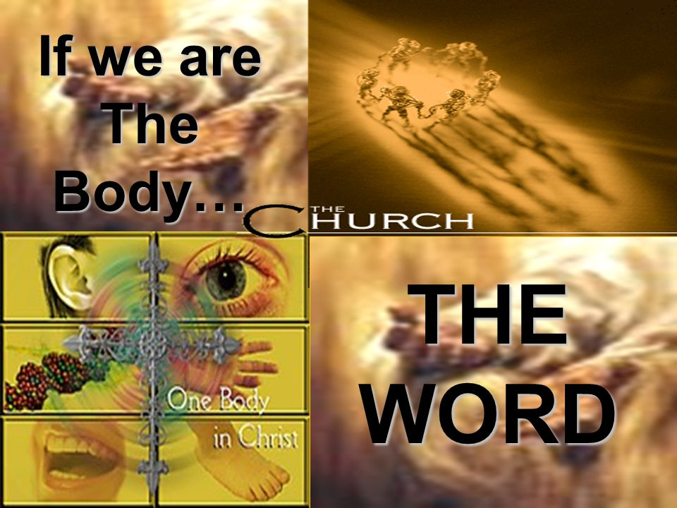 If we are The Body… THE WORD
