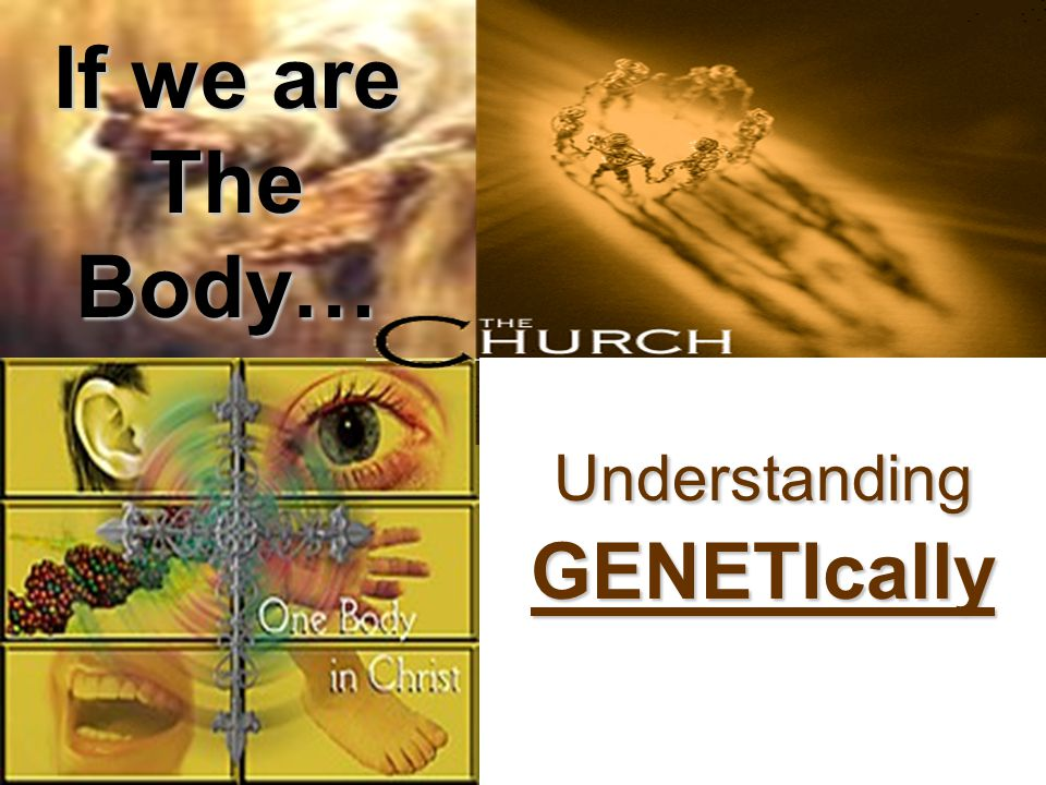 If we are The Body… UnderstandingGENETIcally