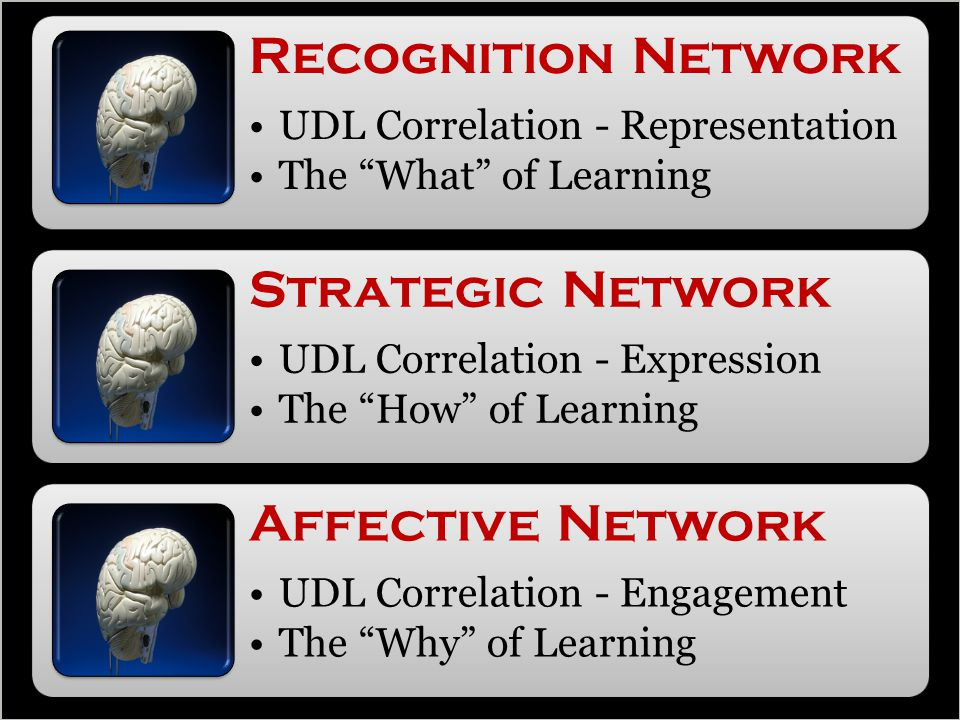 Recognition Network UDL Correlation - Representation The What of Learning Strategic Network UDL Correlation - Expression The How of Learning Affective Network UDL Correlation - Engagement The Why of Learning