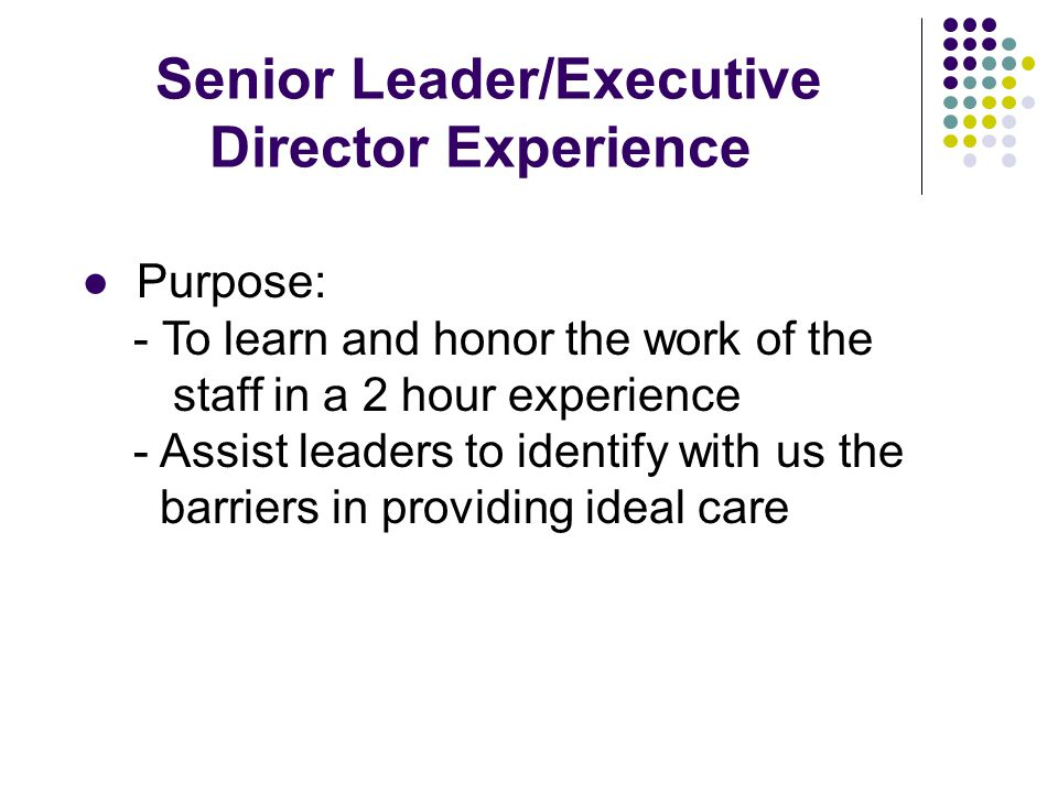 Senior Leader/Executive Director Experience ● Purpose: - To learn and honor the work of the staff in a 2 hour experience - Assist leaders to identify