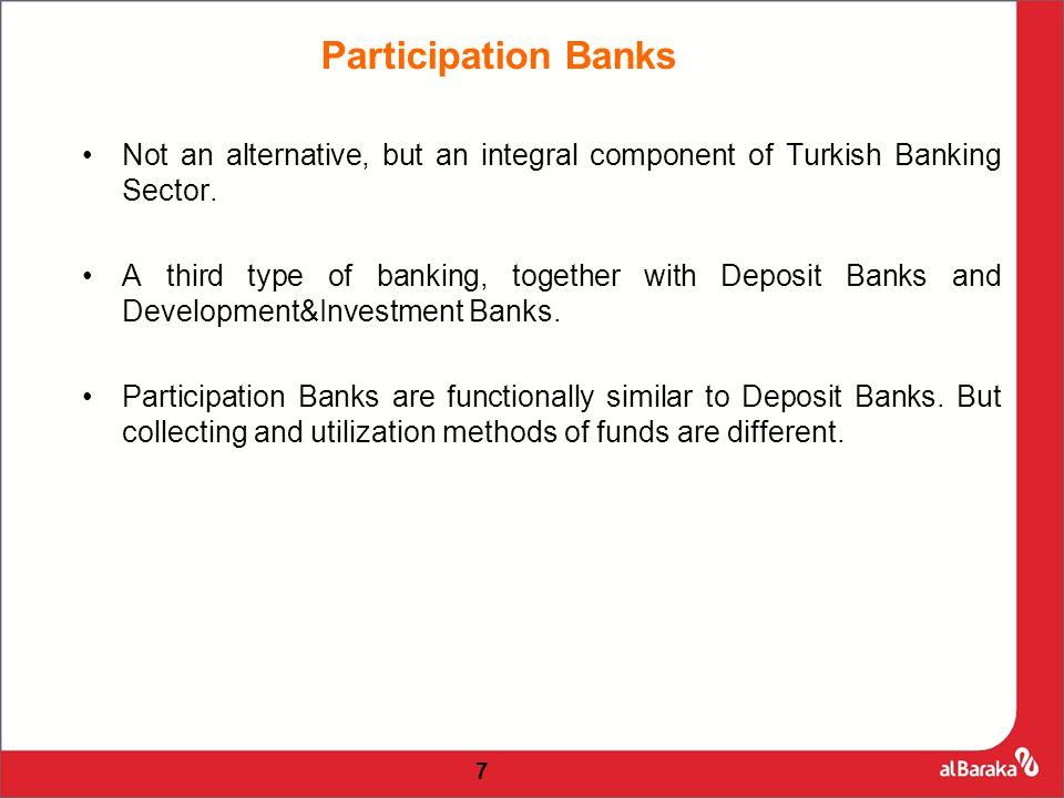 18 Participation Banks' Market Share (Total Assets)