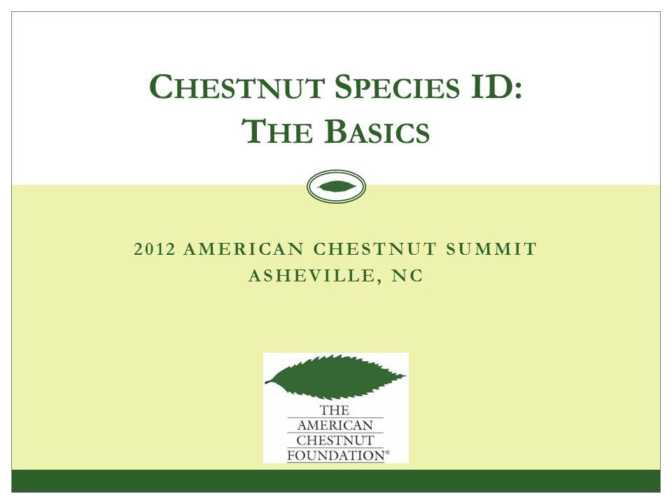 2012 AMERICAN CHESTNUT SUMMIT ASHEVILLE, NC C HESTNUT S PECIES ID: T HE B ASICS