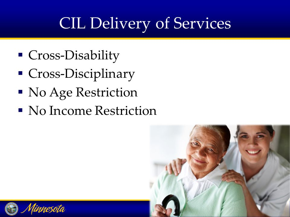 VRS/IL Project - Summary  Purpose Advance the employment and independent living of Minnesotans who require both VR and IL to achieve employment, independent living and community integration  Funding VRS program income funds  Past efforts Yes they have been tried and tried.