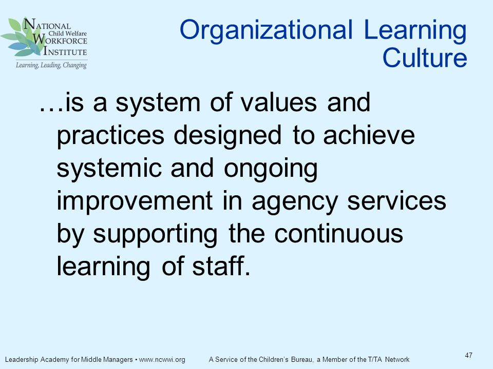 Organizational Learning Culture …is a system of values and practices designed to achieve systemic and ongoing improvement in agency services by supporting the continuous learning of staff.