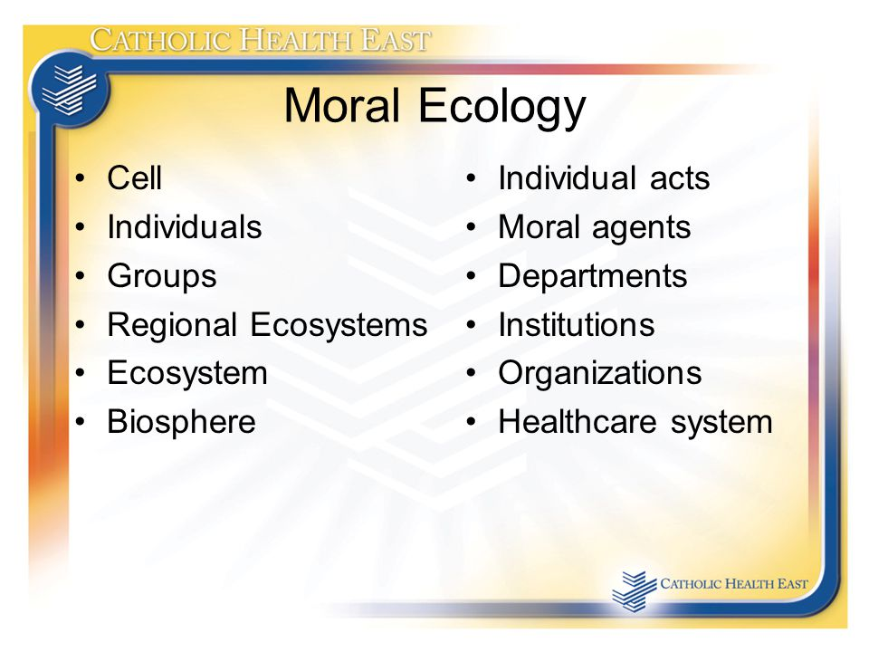 Moral Ecology Cell Individuals Groups Regional Ecosystems Ecosystem Biosphere Individual acts Moral agents Departments Institutions Organizations Healthcare system