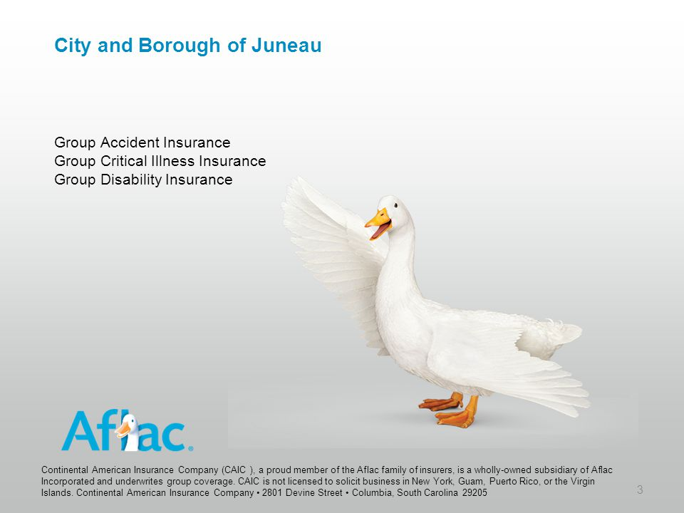 City and Borough of Juneau Group Accident Insurance Group Critical Illness Insurance Group Disability Insurance 3 Continental American Insurance Compa