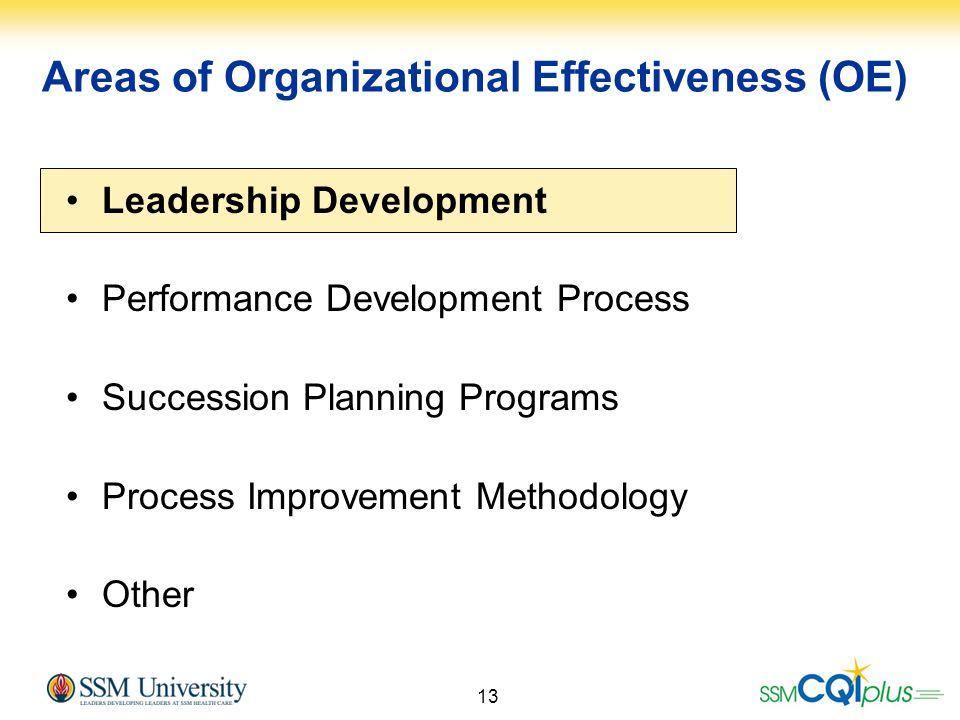 13 Leadership Development Performance Development Process Succession Planning Programs Process Improvement Methodology Other Areas of Organizational E