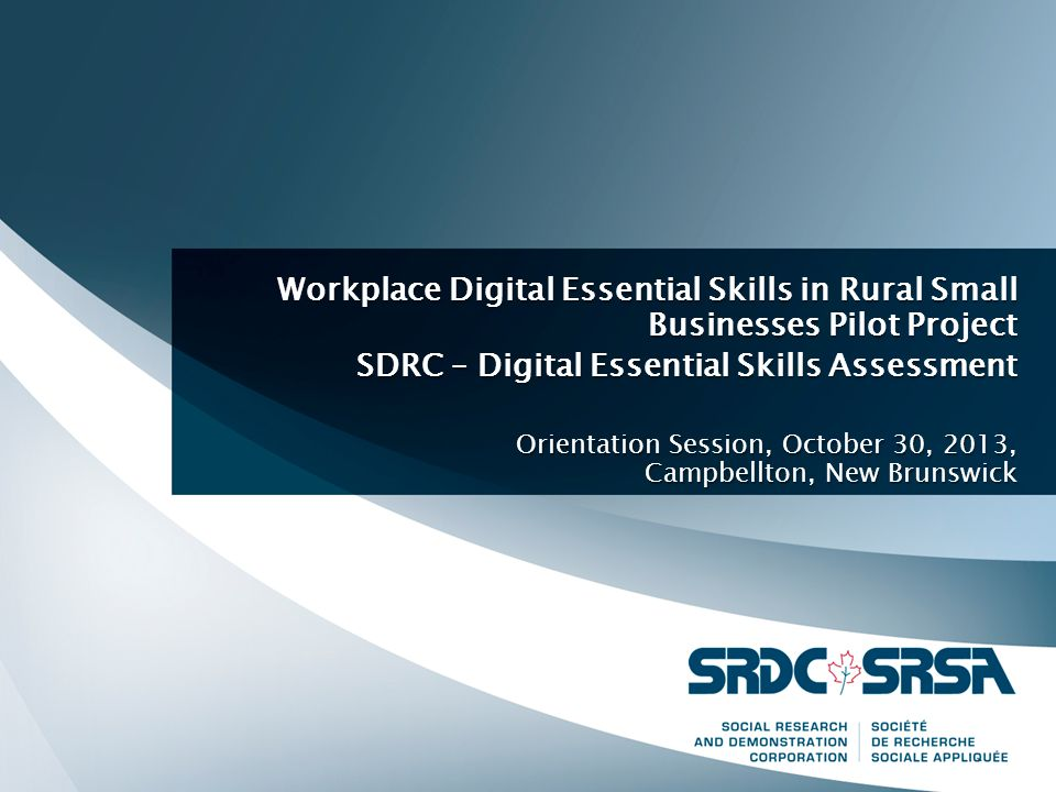 Workplace Digital Essential Skills in Rural Small Businesses Pilot Project SDRC – Digital Essential Skills Assessment Orientation Session, October 30, 2013, Campbellton, New Brunswick