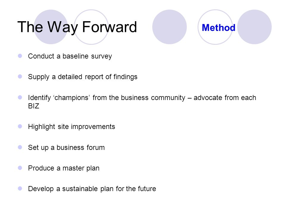 The Way Forward Conduct a baseline survey Supply a detailed report of findings Identify 'champions' from the business community – advocate from each BIZ Highlight site improvements Set up a business forum Produce a master plan Develop a sustainable plan for the future Method