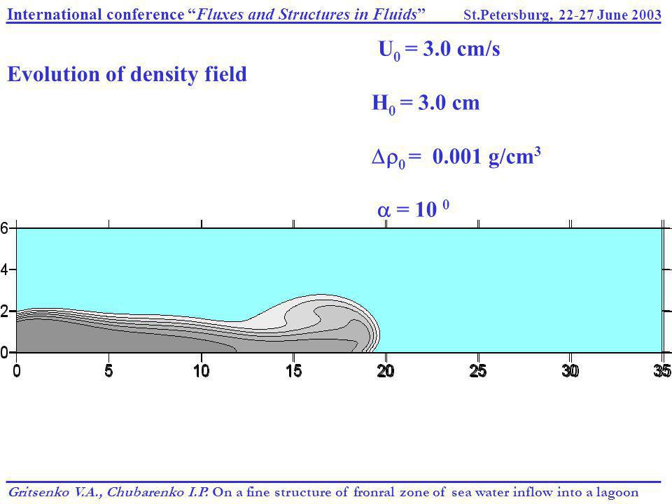 "International conference ""Fluxes and Structures in Fluids"" St.Petersburg, 22-27 June 2003 Gritsenko V.A., Chubarenko I.P. On a fine structure of fronr"