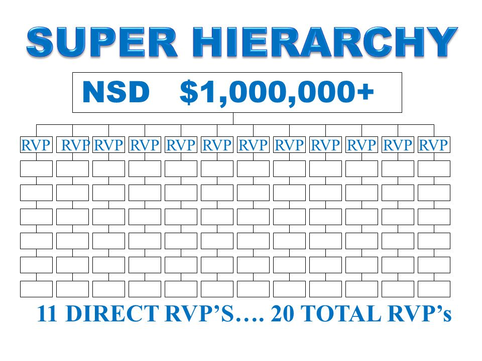 RVP 11 DIRECT RVP'S…. 20 TOTAL RVP's NSD $1,000,000+ RVP