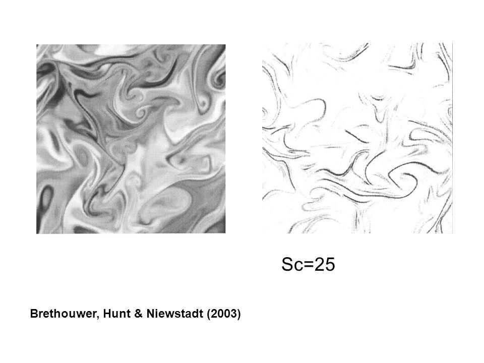 Brethouwer, Hunt & Niewstadt (2003) Sc=25