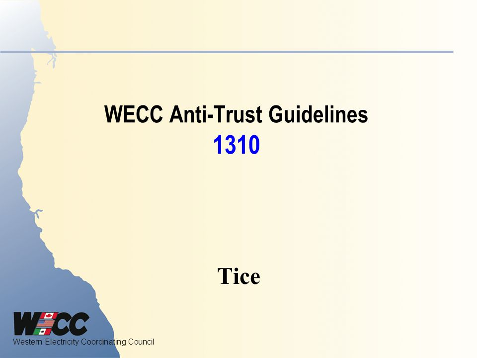 Western Electricity Coordinating Council The Process Focus on the Criteria W.