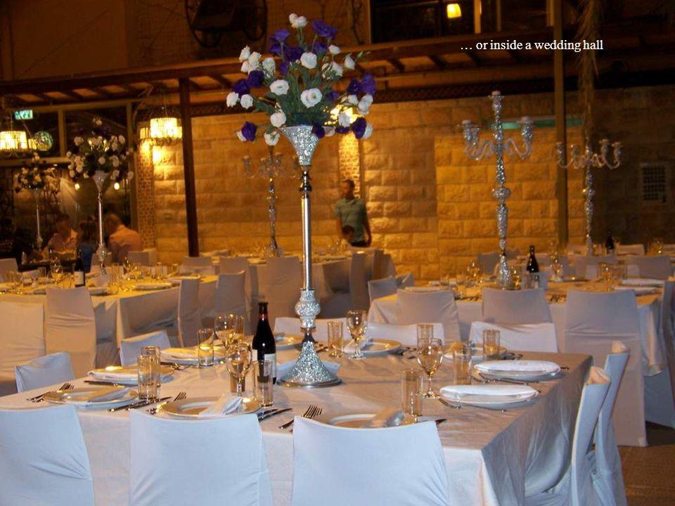 … or inside a wedding hall