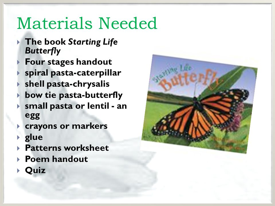 Instructional Activities  Anticipatory Set – Ask students if they have ever caught a butterfly or played with a caterpillar.