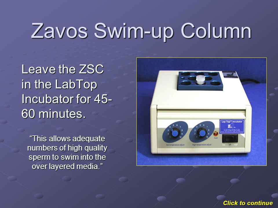 Zavos Swim-up Column Aspirate all the media, which should contain all the motile and healthy sperm, from the outside of the cone.