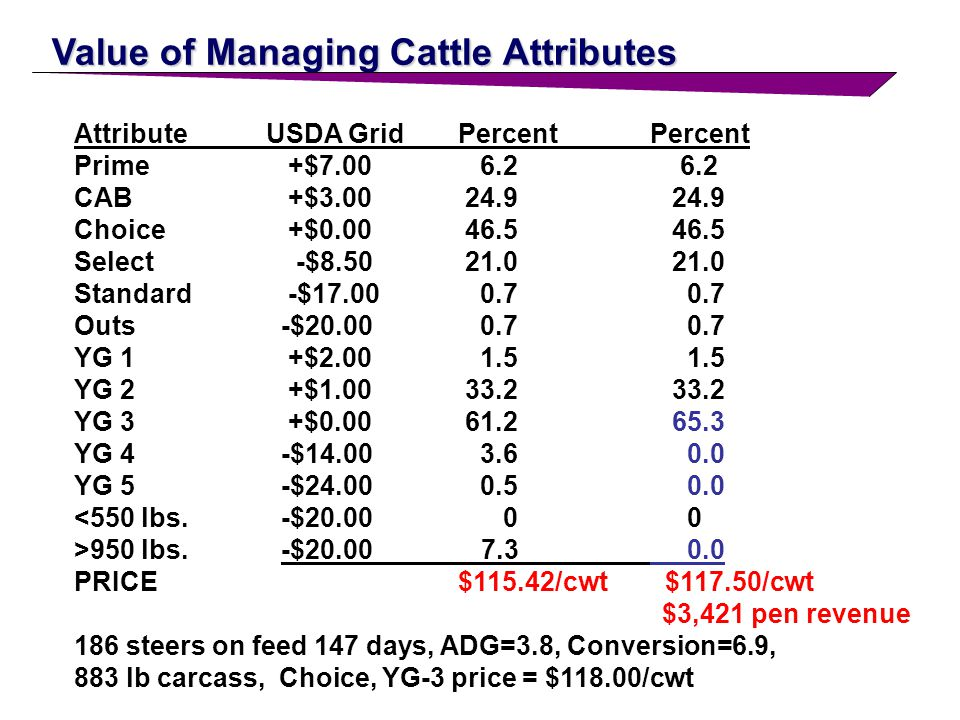 Value of Managing Cattle Attributes AttributeUSDA GridPercentPercent Prime +$7.00 6.2 6.2 CAB +$3.00 24.9 24.9 Choice +$0.00 46.5 46.5 Select -$8.50 21.0 21.0 Standard -$17.00 0.7 0.7 Outs -$20.00 0.7 0.7 YG 1 +$2.00 1.5 1.5 YG 2 +$1.00 33.2 33.2 YG 3 +$0.00 61.2 61.2 YG 4 -$14.00 3.6 3.6 YG 5 -$24.00 0.5 0.5 <550 lbs.