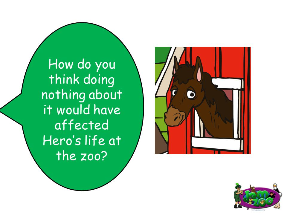 How do you think doing nothing about it would have affected Hero's life at the zoo