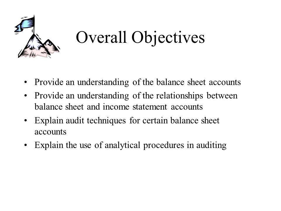 Overall Objectives Provide an understanding of the balance sheet accounts Provide an understanding of the relationships between balance sheet and inco