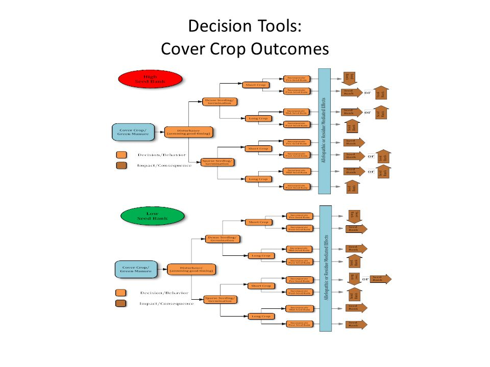 Decision Tools: Cover Crop Outcomes