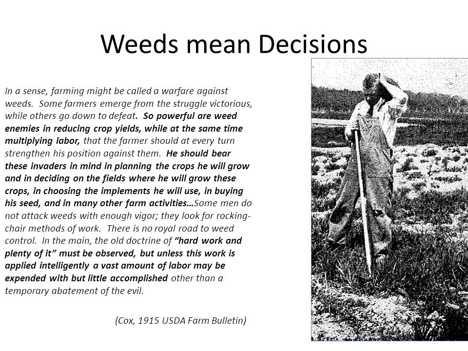 Weeds mean Decisions In a sense, farming might be called a warfare against weeds.